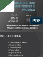 Thermoelectric Mini Fridge & Warmer