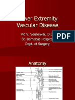 Lower Extremity Vascular Disease