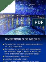 Patologia Del Intestino Delgado