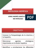 PATOLOGIA HEPATICA UIS 2012