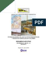 biomasa_CULTIVOS ENERGETICOS