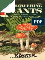 Non Flowering Plants