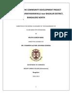 Community Development Project Report