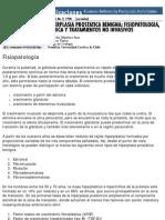 Boletin Patología de la Glándula Prostática