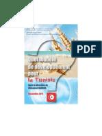 Quel modèle de développement pour la Tunisie