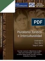 Alba y Castro - 2008 - Pluralismo jurídico e interculturalidad