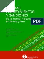 Cóndor Chuquiruna - 2010 - Normas, procedimientos y sanciones de la justicia