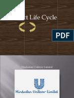 Product Life Cycle_ IIPS