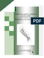 Anatomia de superfície e palpatória da coxa e joelho - Prof. Me. Leandro Nobeschi