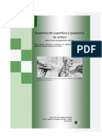 Anatomia de Superficie e Palpatoria Do Ombro - Prof. Me. Leandro Nobeschi