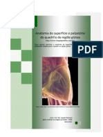 Anatomia de superfície e palpatória do quadril e da região glútea - Prof. Me. Leandro Nobeschi