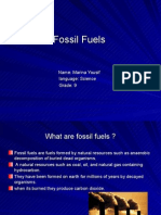fossilfuels-100519135110-phpapp02