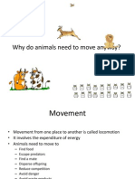 Movement in Animal
