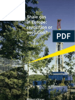Shale Gas in Europe Revolution or Evolution