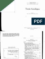 Birnbaum, Pierre & Chazel, François - Teoria Socilógica