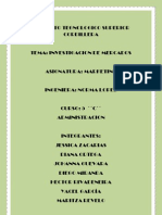 proyecto  mkt IMC