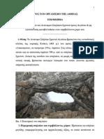 ΥΠΟΜΝΗΜΑ για σπήλαιο Σχιστού 2012 (1)