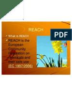 REACH FAQ