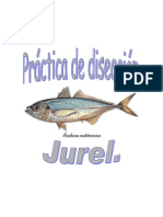 Diseccion Jurel