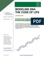 DNA Modelling