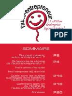 Guide Auto Entrepreneur