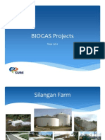 SURE-Biogas Projects 2011
