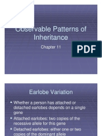 Microsoft Power Point - Ch11_lecture(Observable Patterns of Inheritance)