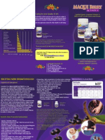 Maqui Berry Activate Brochure