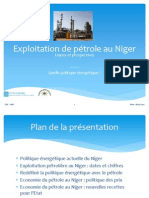 20120218 Cdc Anif Conference Petrole Au Niger 1 Energie