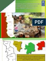 Etude du PNUD sur le Togo