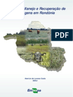 Formação, Manejo e Recuperação de Pastagens em Rondônia
