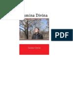 SORIN CERIN -LUMINA DIVINA