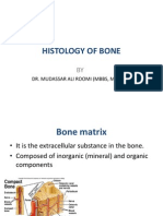 2nd Lecture on Histology of Bone by Dr Mudassar Ali Roomi