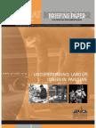 BriefingPaper20_LabourIssues
