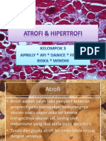 ATROFI & HIPERTROFI