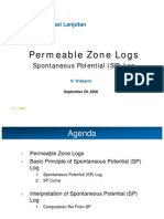 03 Permeable Zone Logs SP