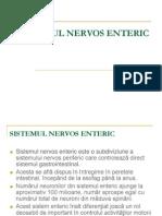 SISTEMUL NERVOS ENTERIC