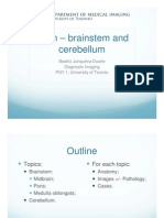 Brain Presentation