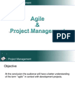 20110412 Agile Project Management