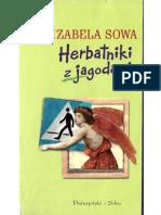 Sowa Izabela - Herbatniki z Jagodami
