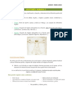 1. Basicos de Anatomia