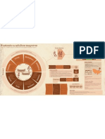 Infografia de Primera Etnografia