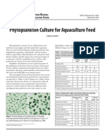 PhytoplanktonAlgaeCulture