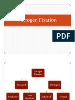 1. Biological Nitrogen Fixation