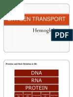 2. Oxygen Transport-Haemoglobin and Myoglobin