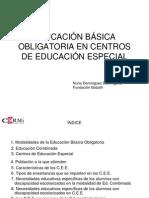 Nuria Dominguez - Escolarizacion en Educacion Basica Obligatoria (CEE)