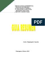 guia resumen