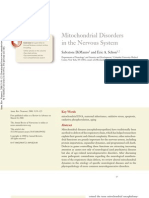 Mitochondrial Disorders in the Nervous System
