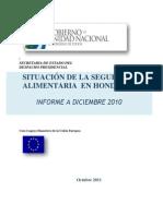 Situacion San 2010 Version 8 Noviembre Roca (1)
