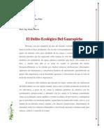 Analisis Del Guarapiche